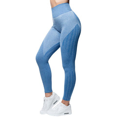 ANARCHY APPAREL WABISABI SEAMLESS BLUE | VAAMSPORT