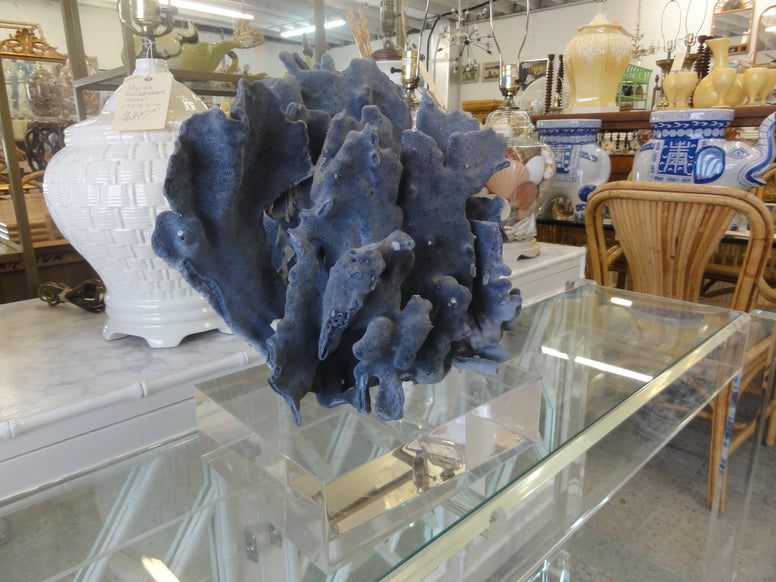 Natural Blue Coral on Lucite