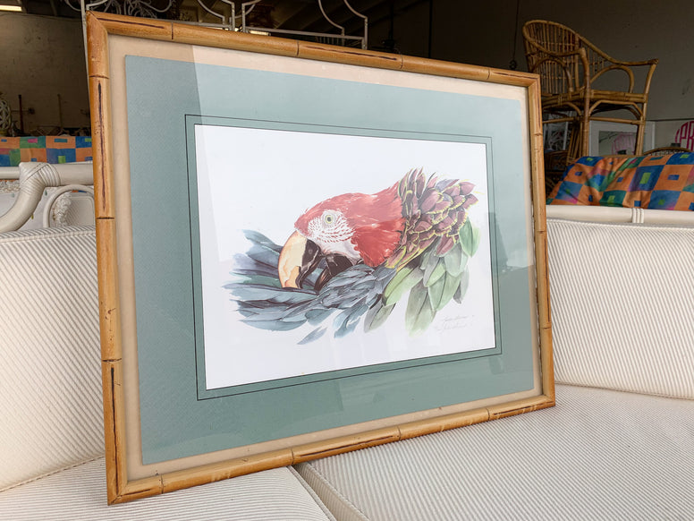 Watercolor Parrot in Bamboo Frame