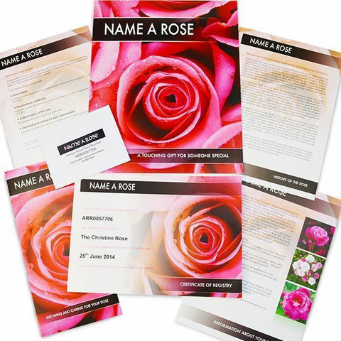 Personalised Name a Rose-OurPersonalisedGifts.com