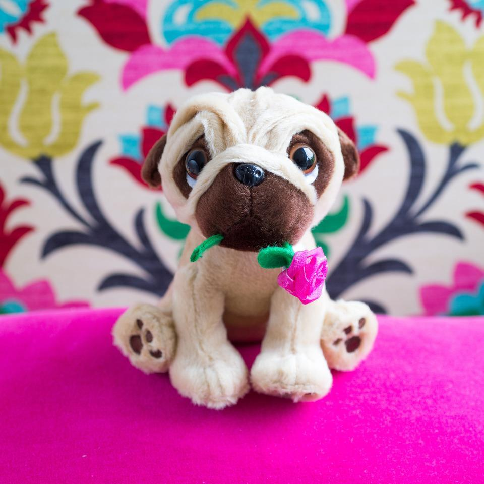 Puglsey with Flower-OurPersonalisedGifts.com