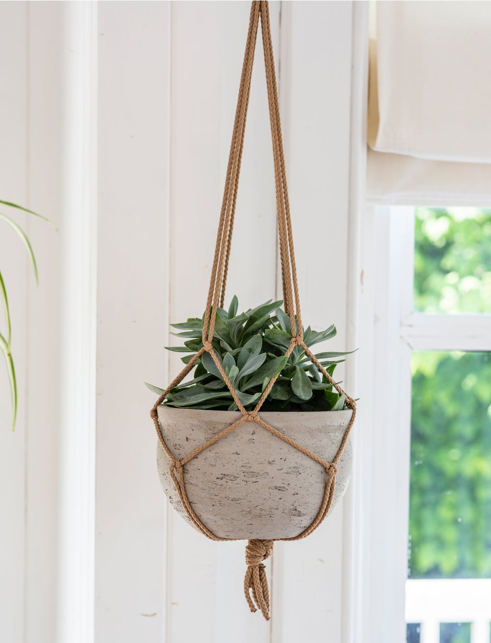 Cement Hanging Plant Pot - Stone