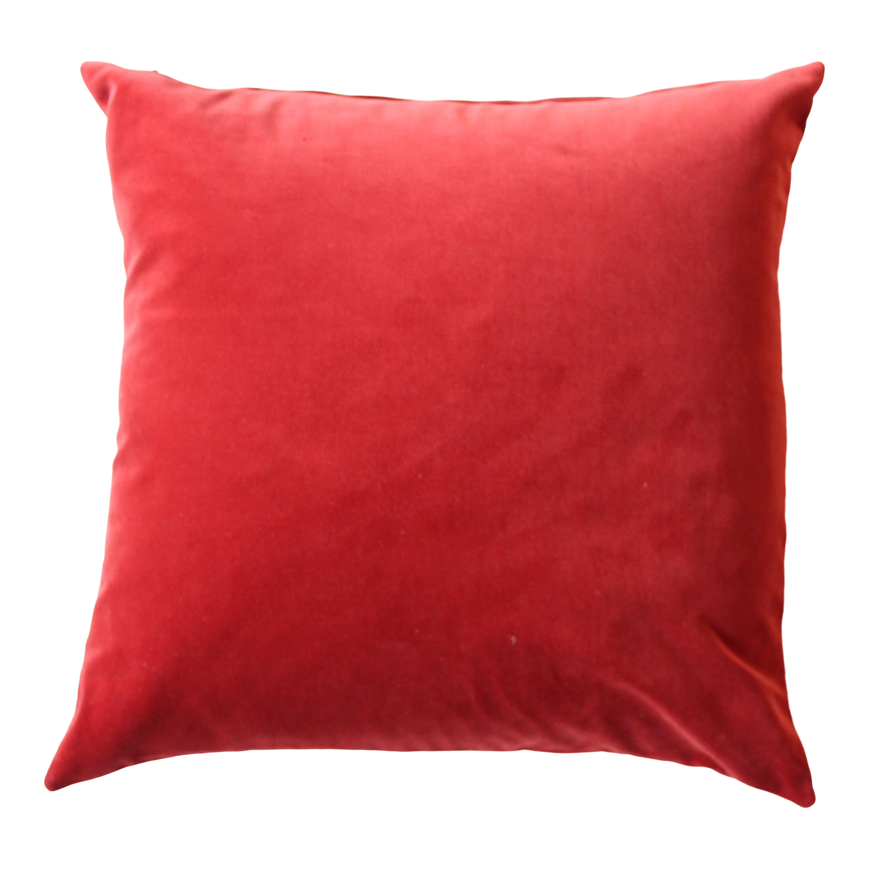 Rust Velvet Cushion