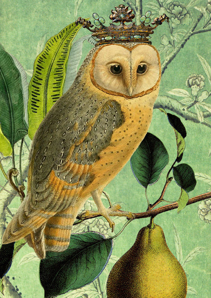 Owl and Pear Greeting Card