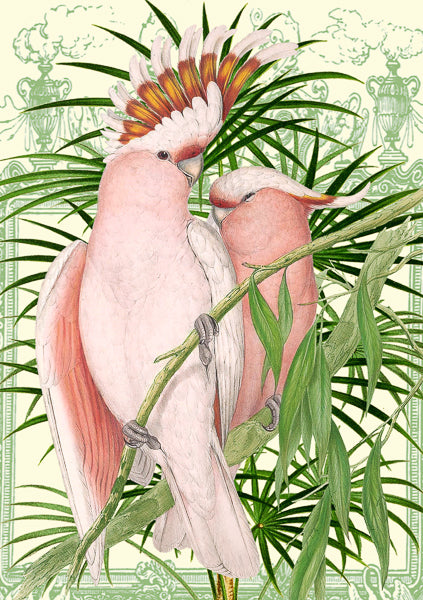 Pink Parrots Greeting Card