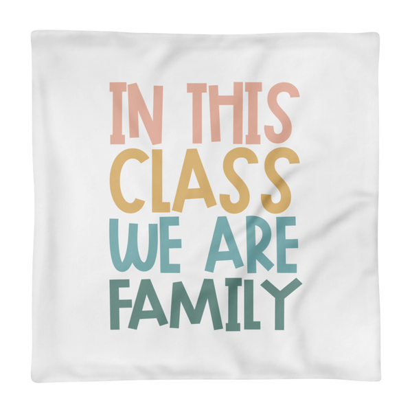 in this class pillow case