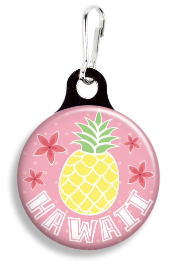 Hawaiian Pineapple - Fetch Life Pet Outfitters Dog & Cat Collar Clips