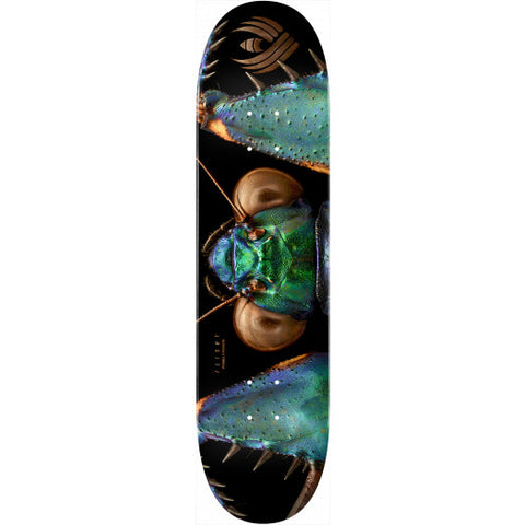 Powell-Peralta Flight Deck Bark Mantis, Shape 245, 8.75""