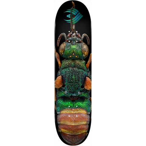 Powell-Peralta Flight Deck Ruby Tailed Wasp, Shape 244, 8.5""