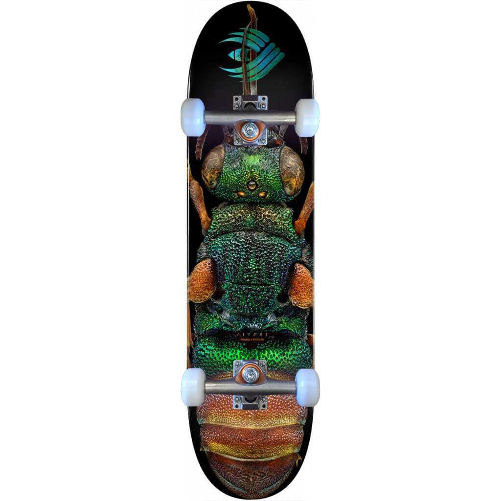 Powell-Peralta Flight Complete Ruby Tailed Wasp, Shape 244, 8.5""