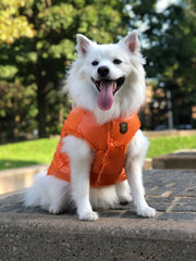 Puffer Jacket Orange - Wag Swag Brand Inc