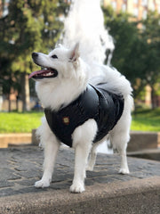 Dog puffer jacket black