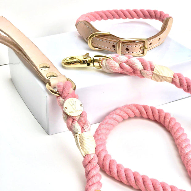 Light Pink | Leather and Rope Leash - Wag Swag Brand Inc