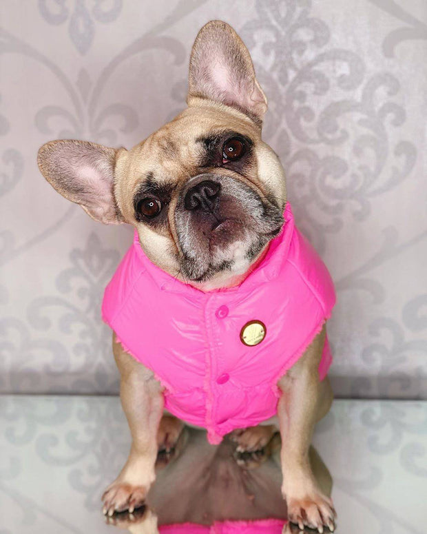 Puffer Jacket Pink - Wag Swag Brand Inc