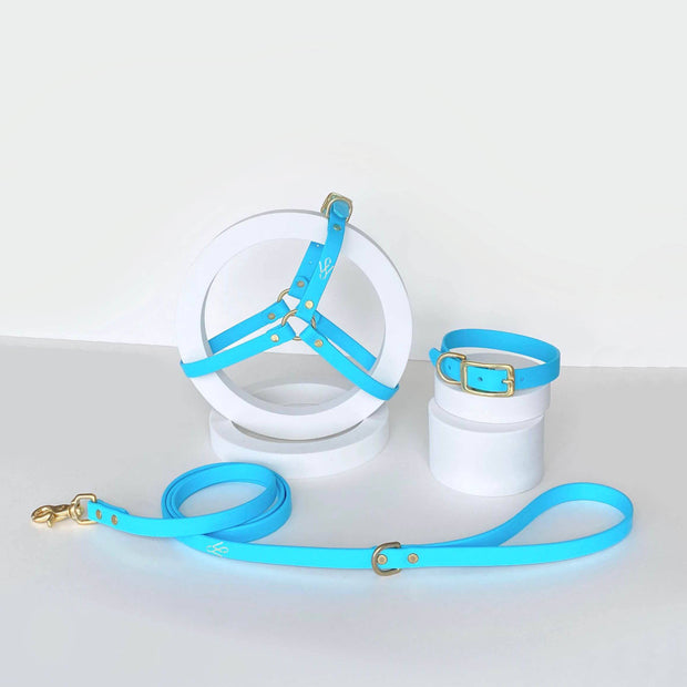 Harness | Baby Blue