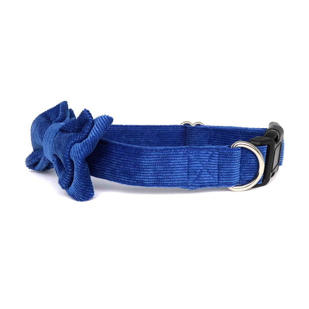Wag Swag Brand | Bow Tie Dog Collar | Blue Corduroy