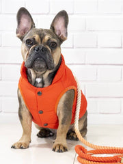 The Orange Bomber - Wag Swag Brand Inc