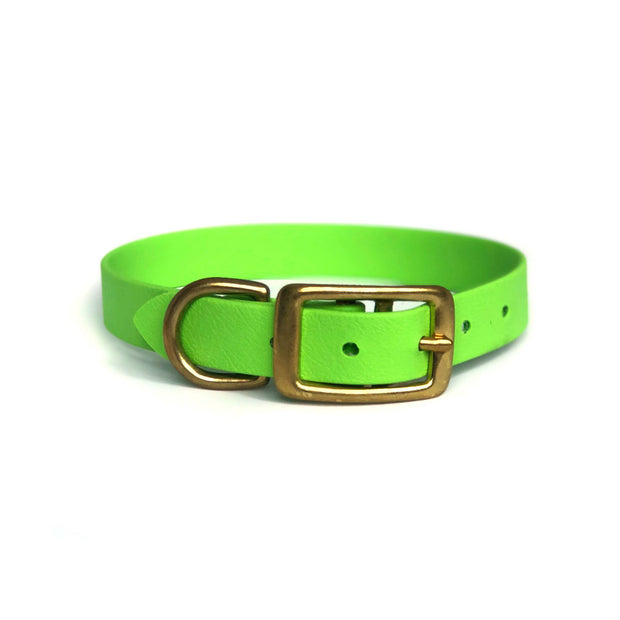 Wag Swag Brand | Vegan Leather Dog Collar | Waterproof | Brass Hardware | Lime Green | Made in Canada Toronto