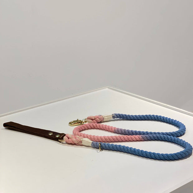 Multi colored | Leather and Rope Leash - Wag Swag Brand Inc