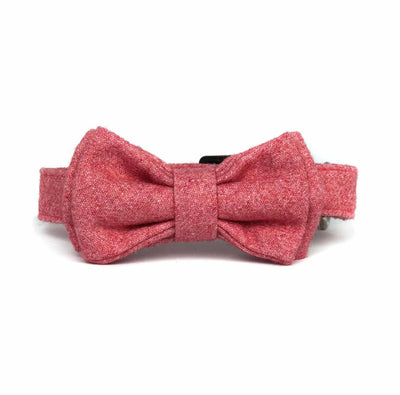 Wag Swag Brand | Bow Tie Dog Collar | Pink Wool