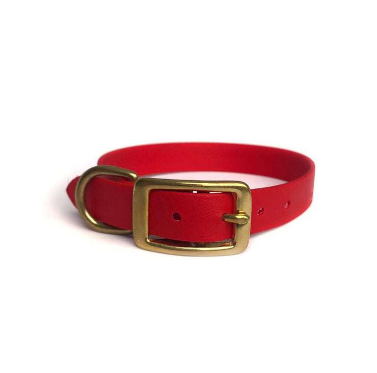 Wag Swag Brand | Vegan Leather Dog Collar | Waterproof | Brass Hardware | Black | Made in Canada Toronto