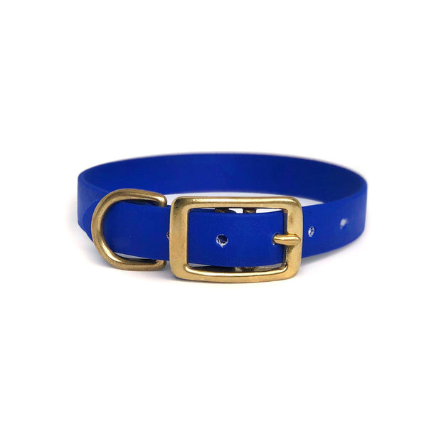 Wag Swag Brand | Vegan Leather Dog Collar | Waterproof | Brass Hardware | Royal Blue | Made in Canada Toronto
