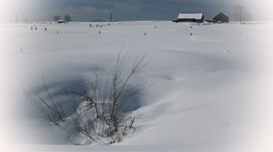 Winter landscape near Einsiedeln, Switzerland