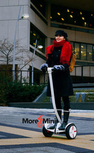 Handlebar for Ninebot by Segway miniPRO
