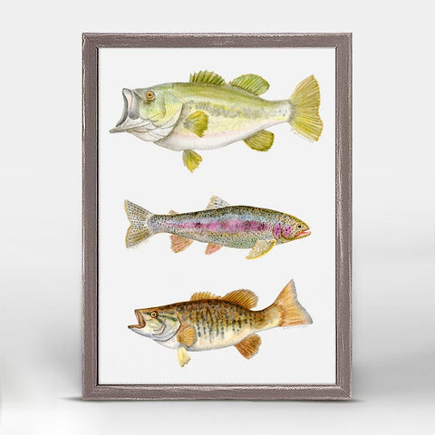 Greenbox Freshwater Fish Mini Framed Canvas