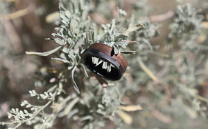 A walnut wood and carbon fiber wedding band for men