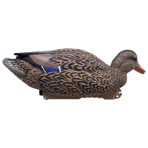 Final Approach Live Mallard Floaters with Flocked Head Drakes, 12 Pack
