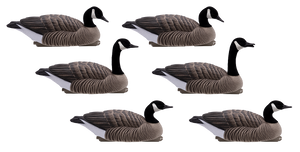 HD Honker Floaters, 6 Pack