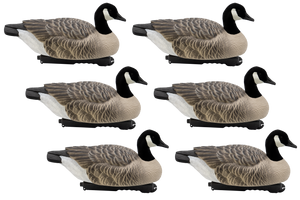 Last Pass Canada Goose Floaters with Flocked Heads, 6 Pack