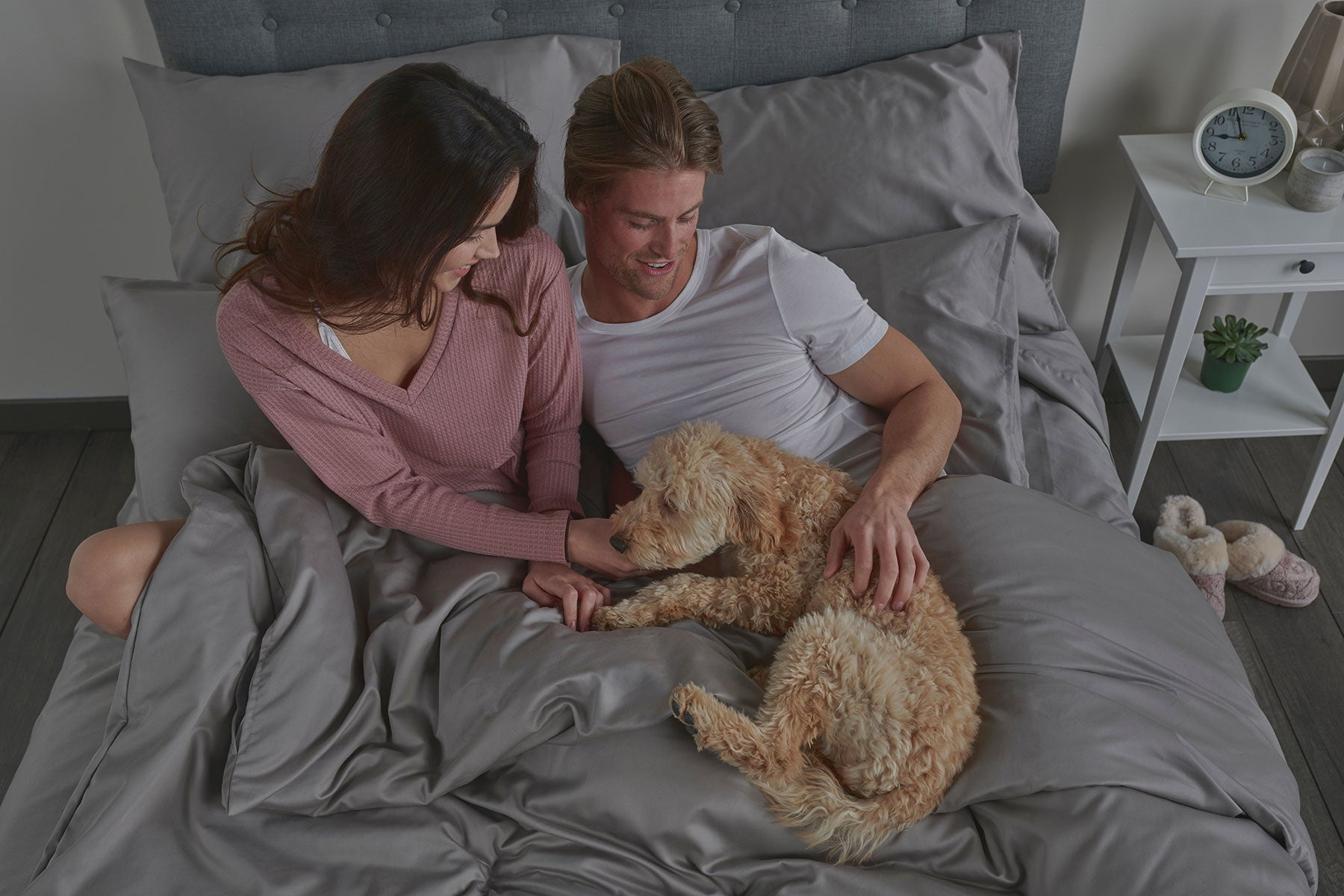 Do You Share Your Sheets With Your Dog?