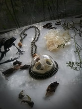 Toad~Spell Bone Reliquary Necklace~ Toad Skull