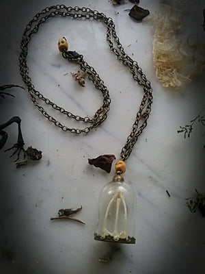 Toad~Spell Reliquary necklace ~Toad Pelvic Waist Bone