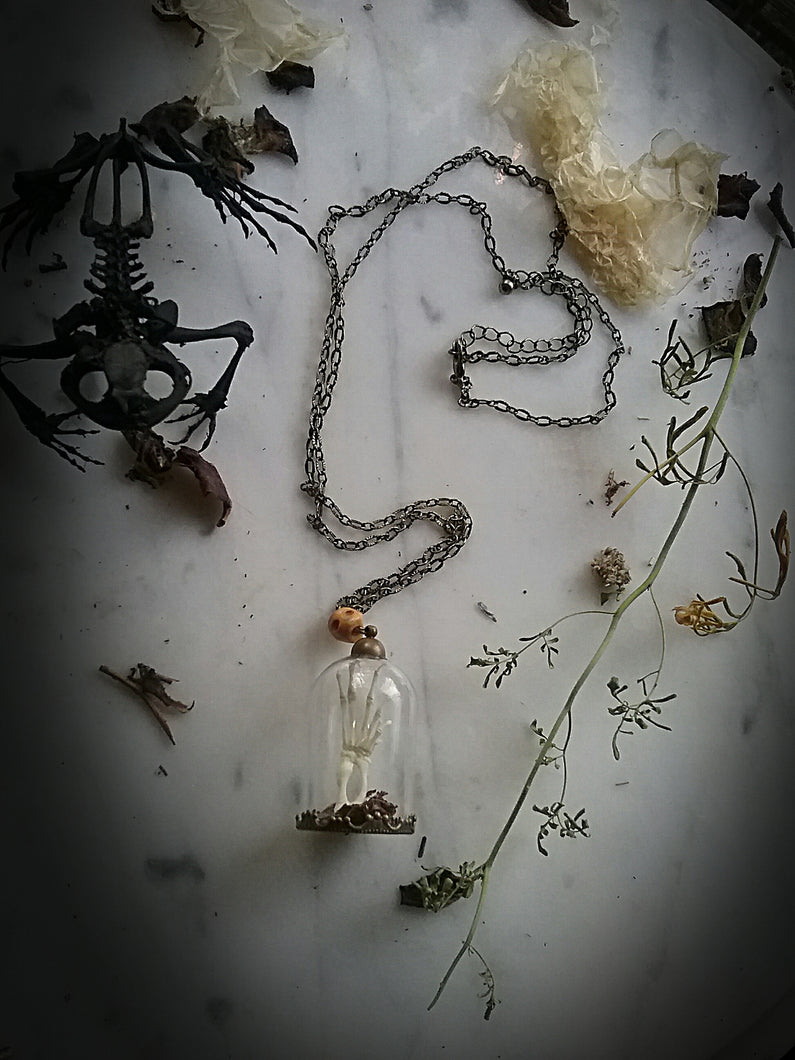 Toad~Spell Reliquary necklace ~Toad Toes Foot Bones