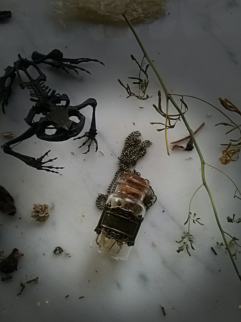 Toad~Spell Reliquary necklace~Toad Leg Bones