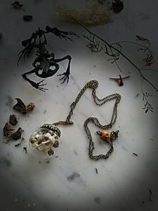 Toad~Spell Reliquary necklace ~Toad Shoulder Blade Bone