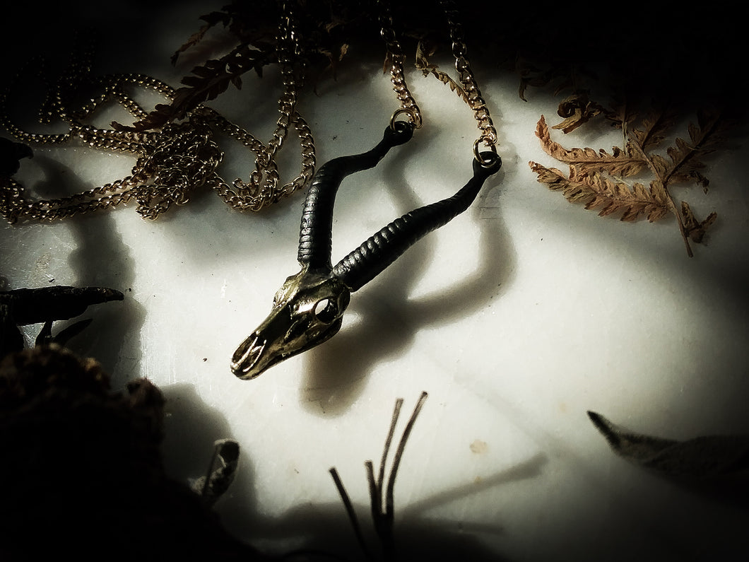 The Black Horn Necklace
