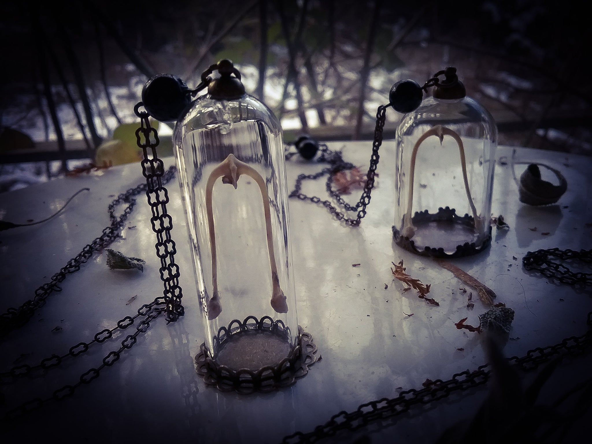 Luck of the Cunning Crow Reliquary necklace~ Carrion Crow Wish Bone