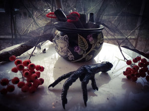 Toad Witch Spell Kit by AmYHorroR & Madame Áine