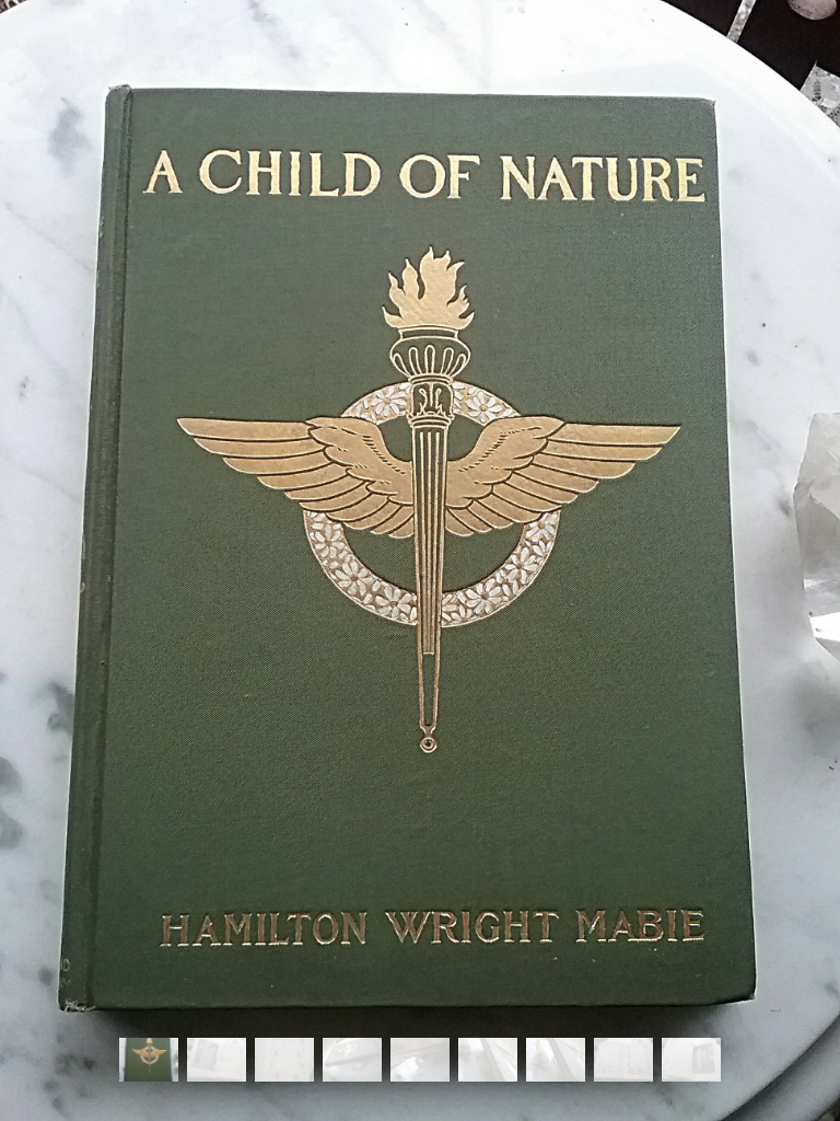A Child of Nature by Hamilton Wright Mabie~ Vintage 1901 First Edition Book ~ Poetry ~ Near Fine Condition