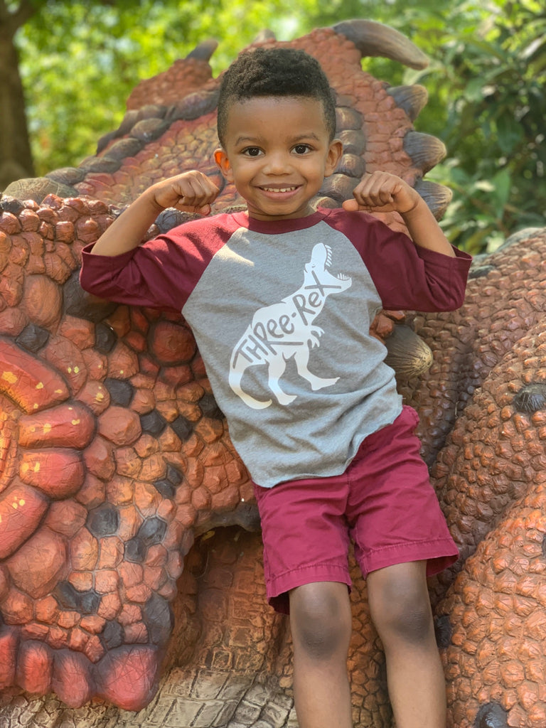 T-Rex Raglan Tee - Wine/Gray (Two-Rex, Three-Rex, Four-Rex, Five-Rex), TEES - itsmypartykids