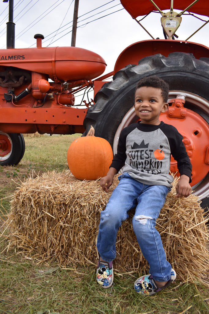 Cutest-pumpkin-in-the-patch-pumpkin-patch-harvest-thanksgiving-toddler-tee-shirt-2-It's My Party Kids Boutique