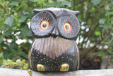 Painted Owlet