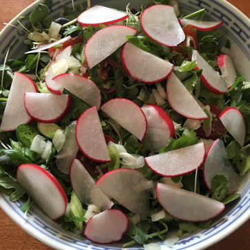 Pink Grapefruit Green Salad with Radishes