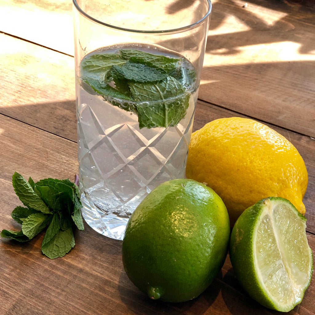 Citrus-Mint White Balsamic Mojito