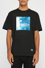 Grizzly Mens Tie Dye Box Graphic Tee