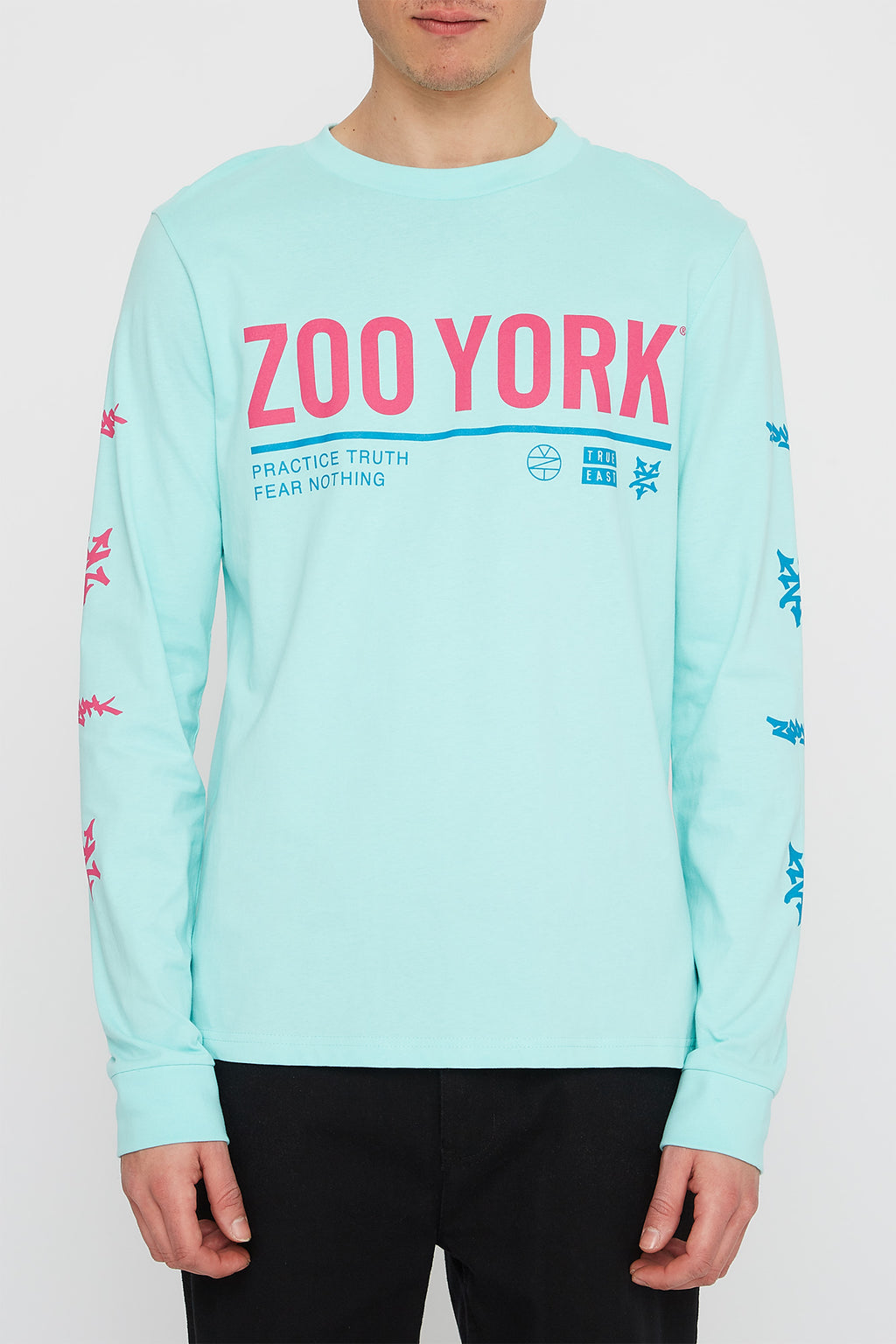 Zoo York Mens Logo Lineup Long Sleeve